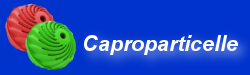 Caproparticelle