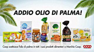 Olio-di-palma1[1]
